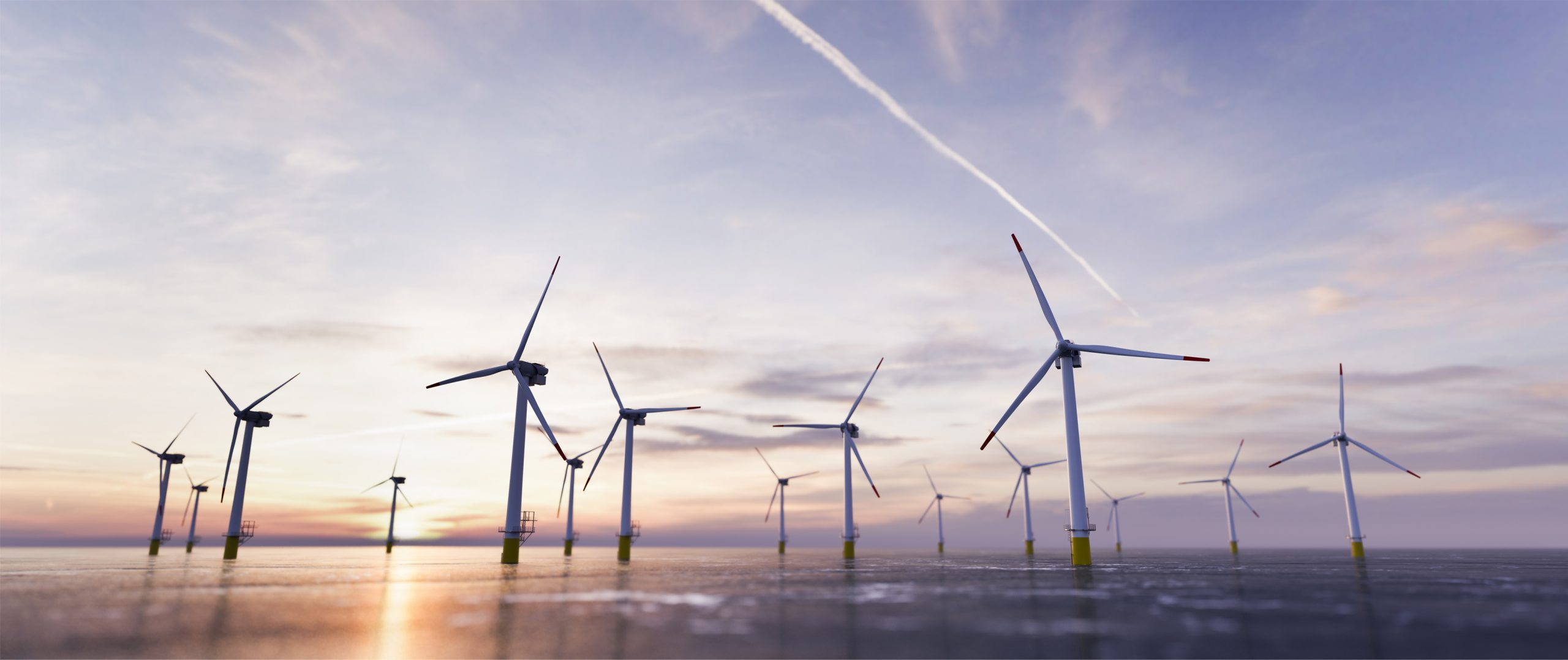 New name for renewables industry group